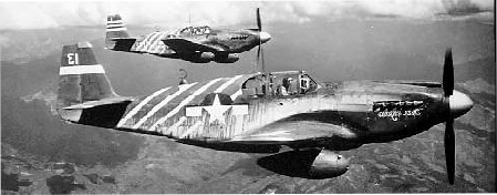 P51 fighter-planes